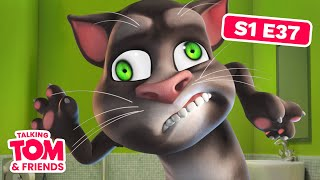 Talking Tom and Friends - The Famous Monster (Episode 37)
