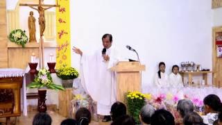 Bài giảng Lòng Thương Xót Chúa ngày 24/1/2017 - Cha Giuse Trần Đình Long