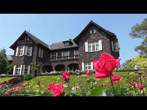 東京都立旧古河庭園の「マリア カラス」(バラ) roses name in the Tokyo Metropolitan Kyu-Furukawa Gardens