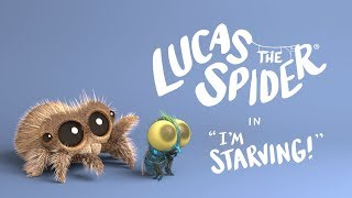 Lucas The Spider - I