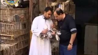 كاميرا خفية لبنانية طول بالك - محل الدجاج  2-2
