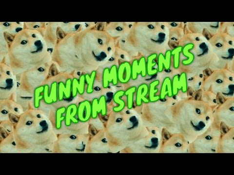 FUNNY MOMENTS FROM STREAM