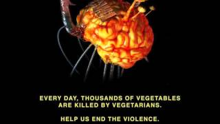 Infected Mushroom - Converting Vegetarians II (Continuous Mix)