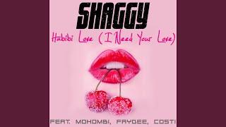 Habibi Love (I Need Your Love)