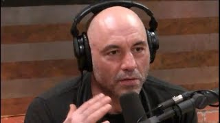 Joe Rogan - You Can Be an Animal Lover and a Hunter