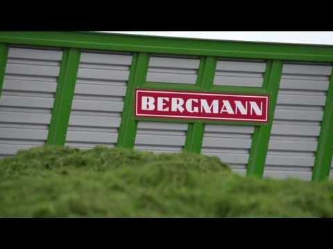 BERGMANN CAREX 38S (2013)