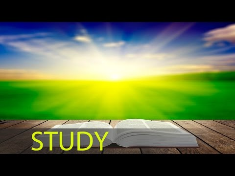 6 Hour Brain Power Study Music Focus Music Concentration Music Studying Music Work Music ☯176