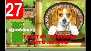 LOTO ACTIVO * TAPITAS SUPER FIJAS* 23-06-2017 * POWER FUL EL GRAN DATERO *