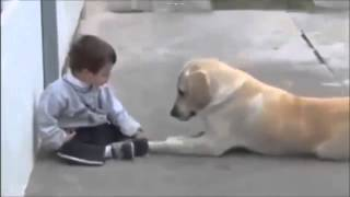 [RAW/FULL] Dog Determined To Make Friends With Boy With Down Syndrome