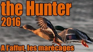 The Hunter 2016 - A l'affut, les marécages ! || FR