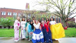 Multicultural Diversity and the Educational Experience (2017)