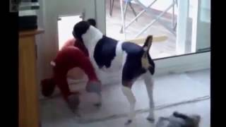 Funny Vines 2017 | Fails Compilation #1 - YouTube:D