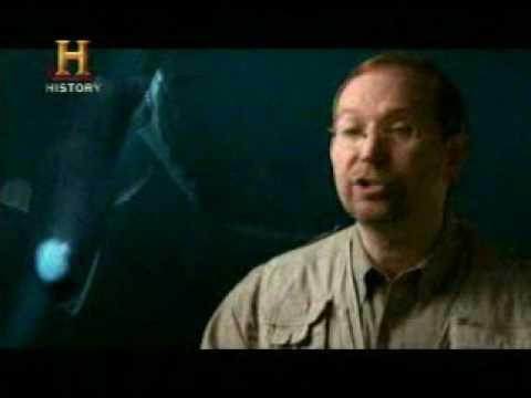 Mundo Jurásico Megalodon Tiburón Monstruo Gigante Parte 6 de 7