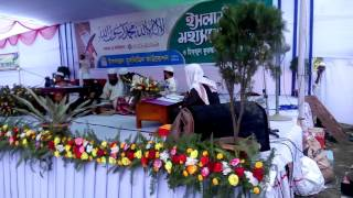 Quranul karim telowat
