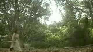 Nhạc Phim Thần Điêu Đại Hiệp (lời việt)