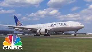 United Halts Shipments Of Pets After A Puppy