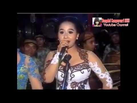 Download Lagu Cokek Sragenan Tardi Laras Terbaru 2015 MP3