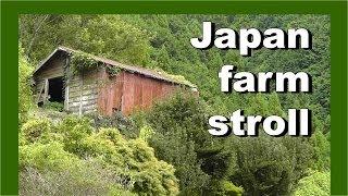 Japan village farmland stroll 日本村の農地の散歩 - Walking in Japan 日本でのウォーキング