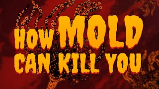 How Mold Can Kill You | True Horror | Gizmodo