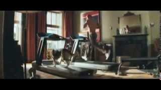 I Am Legend  Trailer (2007) Will Smith
