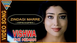 Vishwa the Heman Hindi Dubbed Movie || Zindagi Marre Video Song || Eagle Hindi Movies