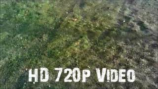 U45 Blue Jay WiFi FPV Quadcopter Drone w/ HD Camera