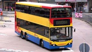 Hong Kong Buses 2017 - Citybus Part 2