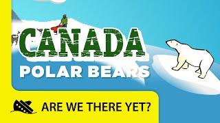 Canada: Polar Bears - Travel Kids in North America