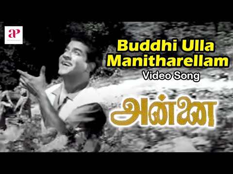 Xxx Mp4 Buddhi Ulla Manitharellam Chandrababu Annai 3gp Sex