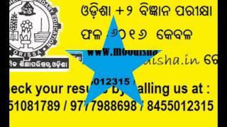 CHSE +2 result Odisha 2016