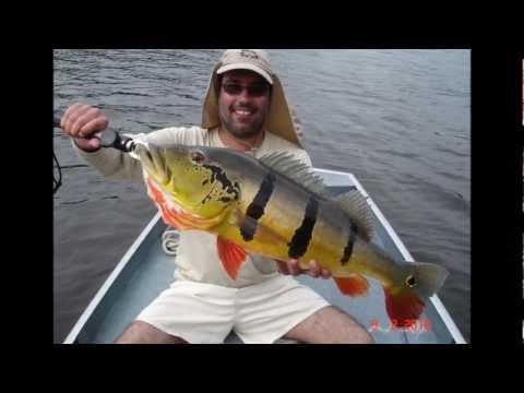 Pescaria na Amazônia Kalua Barco Hotel