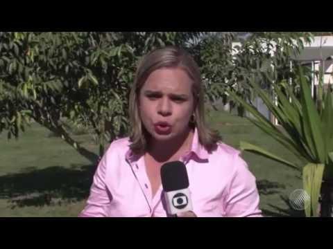 Menina de 11 anos engravida após estupro na Bahia; padrasto é suspeito