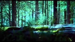Vampire Suck Forest Run