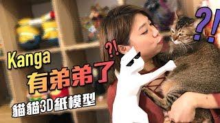 Kanga有弟弟了?!  - 貓貓3D紙模型