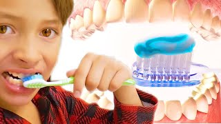 Good habits mix   Brush your teeth - Wash your hands - Clean up time