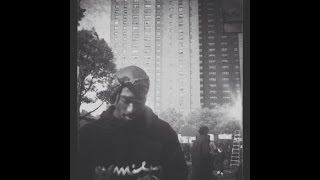 A$AP MOB - Hella Hoes (Feat. 2Pac & Kurupt) [Mizzy Mauri Remix]