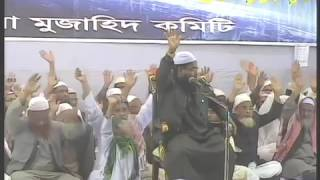 চমৎকার বয়ান New Bangla waz 2016 by Mufti Habibur Rahman Misbah Kuakata