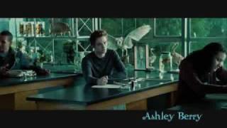 You're So Gay - Twilight - (Edward/Bella)
