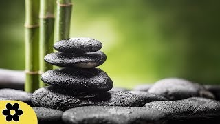 Meditation, Zen Music, Relaxation Music, Chakra, Relaxing Music for Stress Relief, Relax, ✿3236C