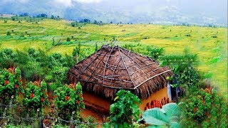 Munnar kerala tourism video ( aerial view )