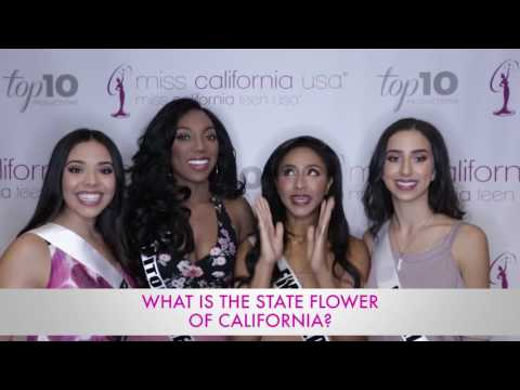 How California Are You? - 2017 Miss California USA Contestants