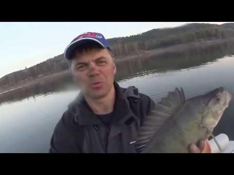 енисей рыбалка в черте города красноярск