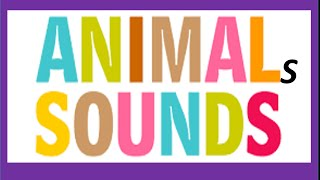 Animals Sounds for Kids