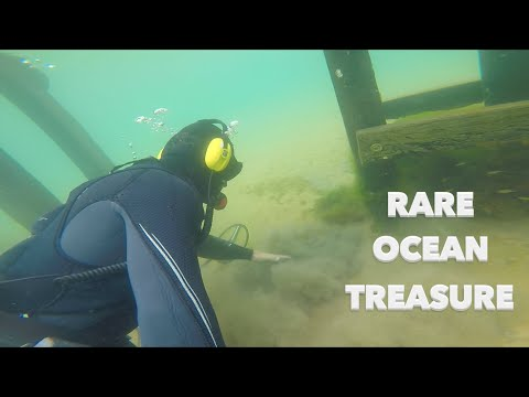 Expensive Ocean Treasure Rarer then GOLD Found Underwater Metal Detecting