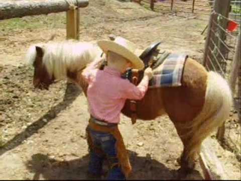 Child Safe Pony For Sale