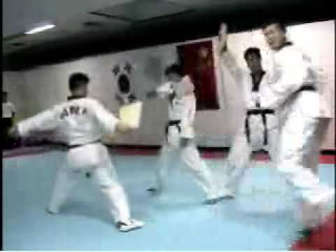 TaeKwonDo Olympic Sparring and Korean Tigers