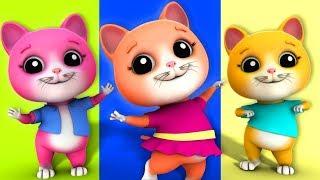 Kids Tv Português - Canções Infantis Live Stream