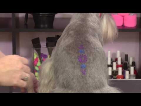 Creative Styling: Short Creative Bits: Shimmer Gel, Hair Crayons & Eyelashes with Angela Kumpe