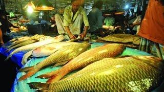 প্রিয় বাংলাদেশঃ সোয়ারীঘাট পাইকারি মাছ বাজার