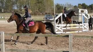 Gasira - Pay and jump, Vänsta Gård 10/5